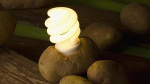 Учените установяват, че при топлинна обработка се намалява напрежението в картофа и по този начин се освобождава още повече енергия.