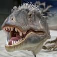 Палеонтолози представиха нов вид динозавър, останки от който са открити преди четири години в южна Юта, САЩ. Откритието доказва, че динозаври като Тиранозавър рекс са съществували десет милиона години по-рано […]