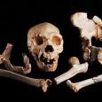 Учени откриха ДНК материал на 400 000 години в Сима де лос Уесос в Северна Испания. Това откритие отваря нови хоризонти при изучаването на нашите предци. Но резултатите са объркващи, […]