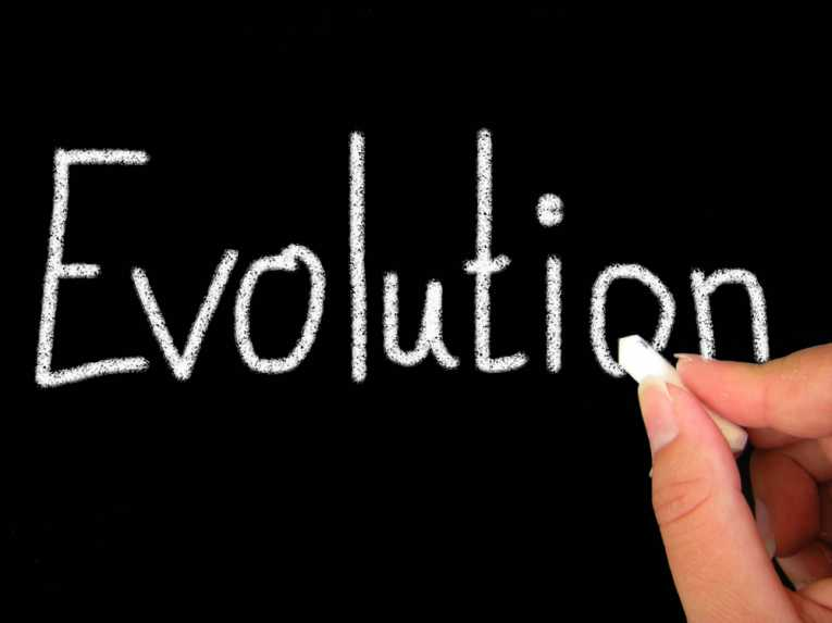 Какво е вашето разбиране за еволюцията?